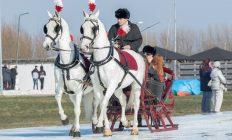 arrenslede met 2 paarden op ijs