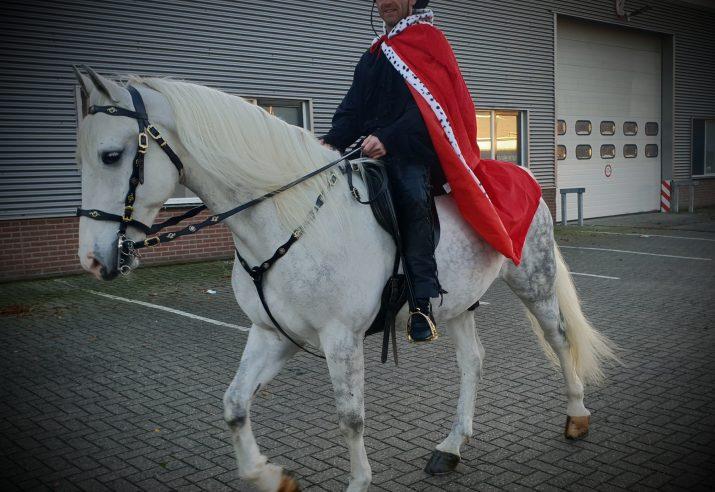 prins op het witte paard met huwelijk aanzoek