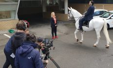 wit paard voor film