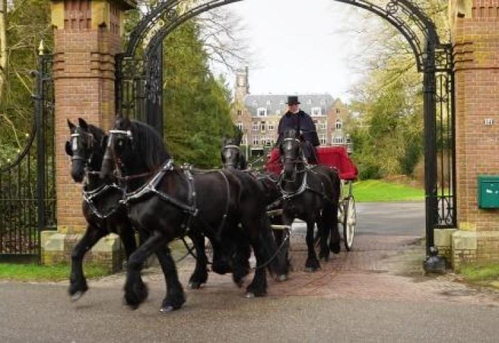 trouwkoets cabriolet of gala landauer met 4 Friese paarden