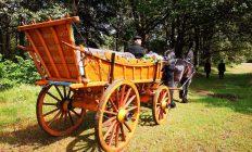 paard en wagen uitvaart