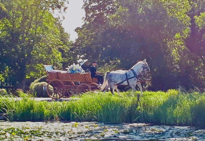 uitvaart paard en wagen