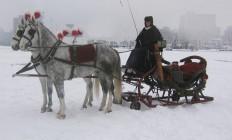 Arrenslee met paarden huren